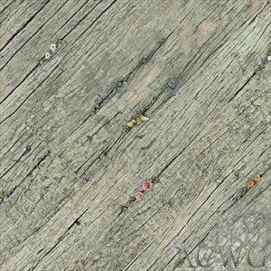 Buy Vintage Floral Plank Earthwerks Vinyl Floors Read